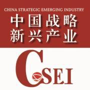 中国战略新兴产业杂志头像